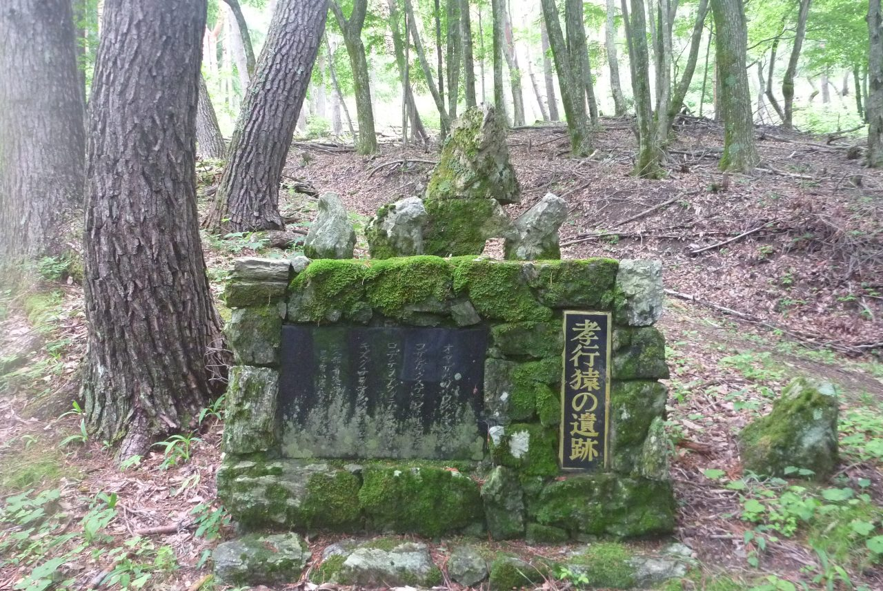 孝行猿 - 墓