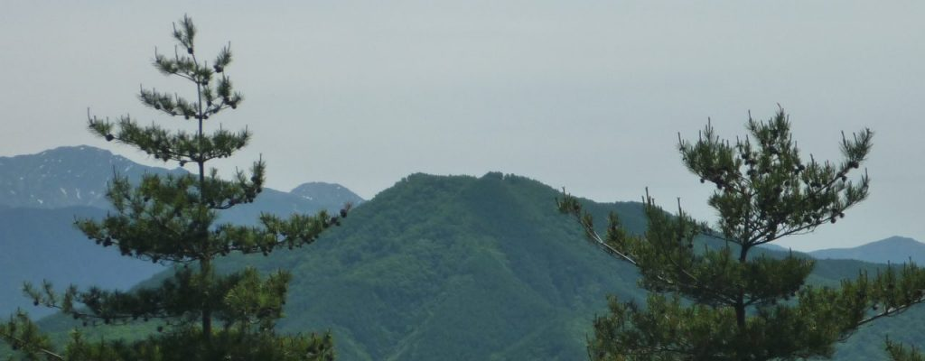戸倉山(伊那富士)