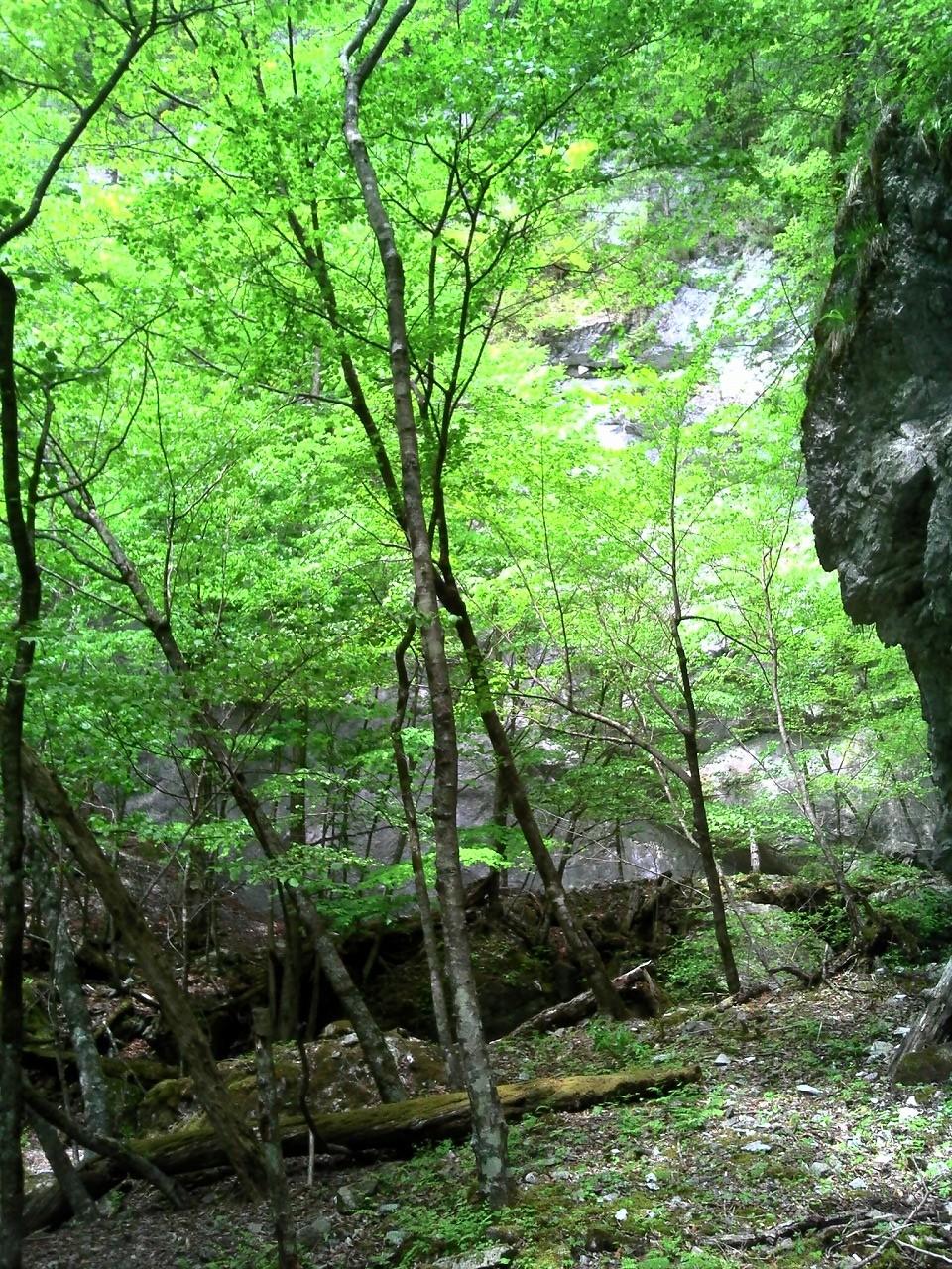 小瀬戸谷の屏風岩