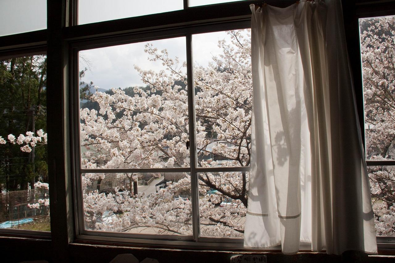 旧木沢小学校 - 窓から見た桜