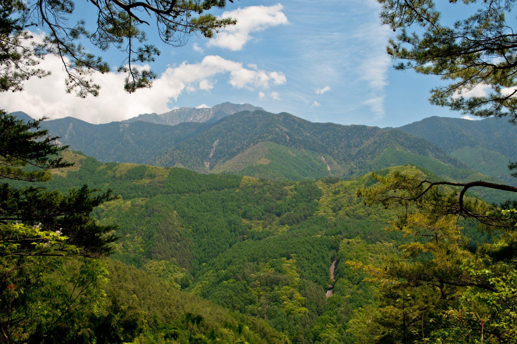 塩平峠 - 仙丈ヶ岳を望む