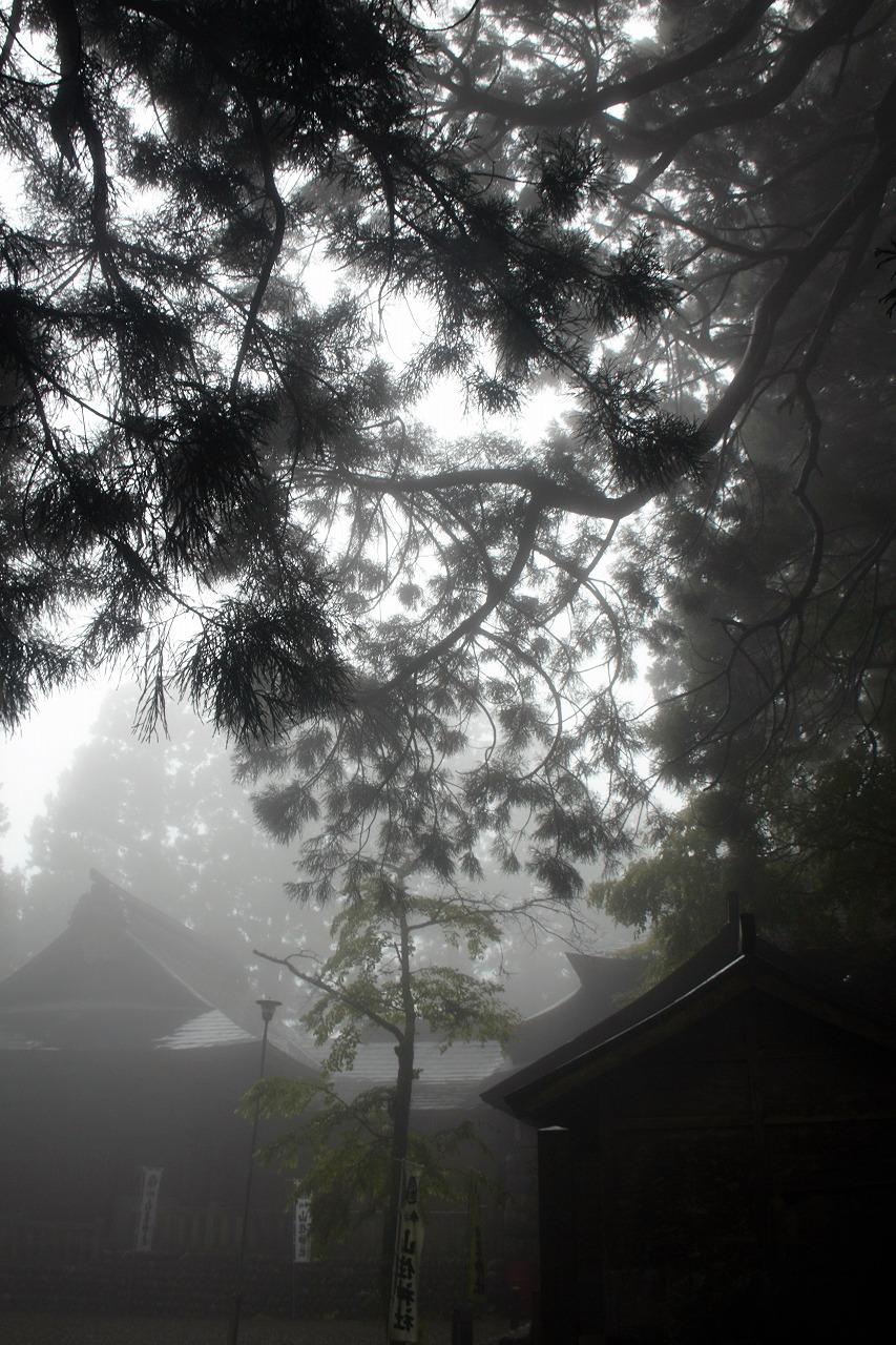 山住神社 - 霧の中の本殿1