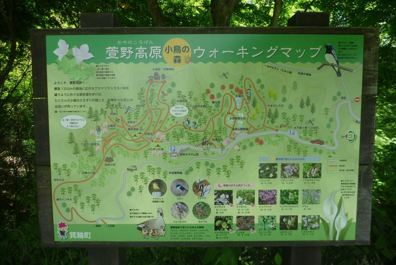 萱野高原 - ウォーキングマップ