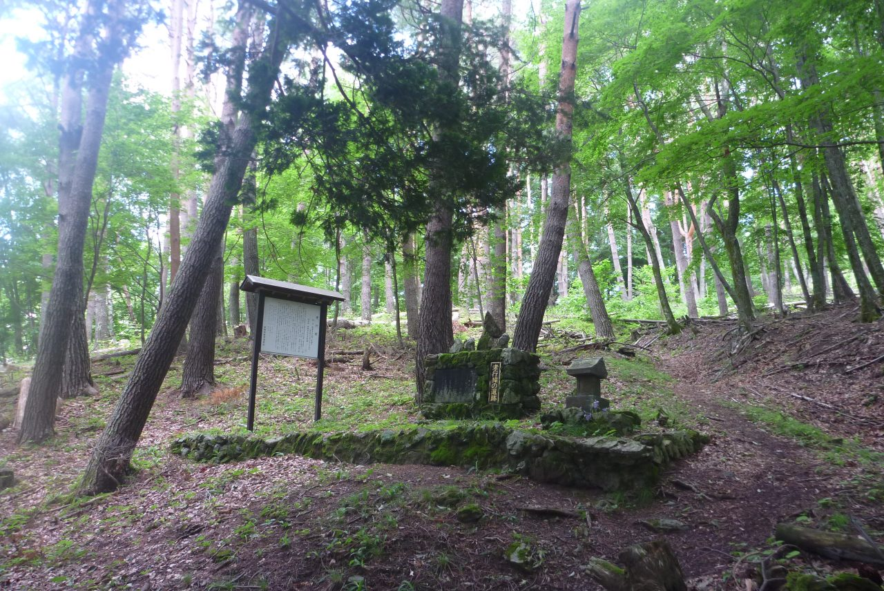 孝行猿 - 墓全景