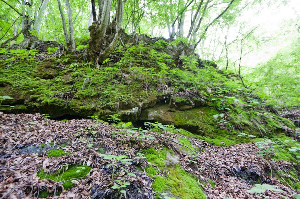 熊倉沢鍾乳洞 - 周囲の様子